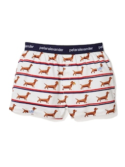 Boys French Daxie Boxer Short