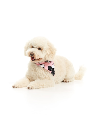 Mickey Mouse Dog Neckerchief